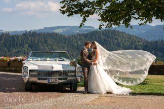 Hochzeits Dienstleister buchen