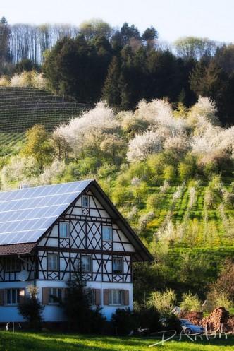 Schwarzwald Fotos